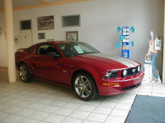 Mustang GT 2010 in unserem Showroom